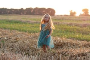 In the field_17 by anastasiya-landa
