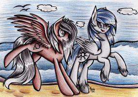 PC - Fun on the beach by Julunis14