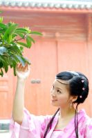 chinese dynasty's girl 4 by angelcurioso