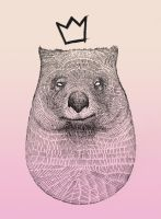 King Wombat 1 by dsasec