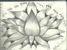 Just a Sketch of a lutos flower by flaviudraghis