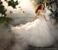 Cinderella's wedding dress by giftedgoddessof-art