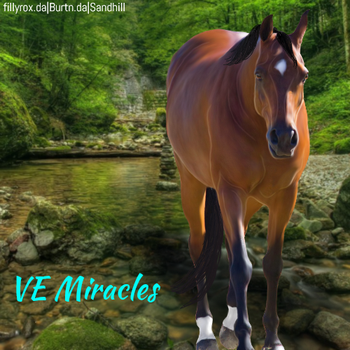 VE Miracles HEE by MClaireB