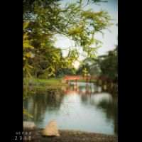 Chinese Garden IV by Renez