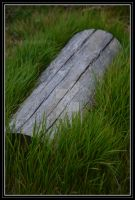 log in grass by DesignKReations