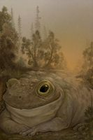 Toadback Road by ursulav