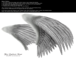 Dual Wings Silver - Med. PNG by Thy-Darkest-Hour