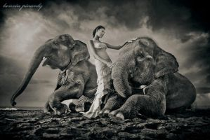the girl and the elephants by kenvinpinardy