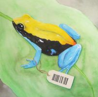 blue legged mantella by Wookie92
