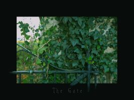 The Gate by Switch1968