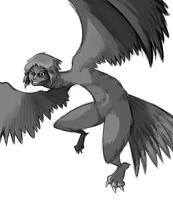 Harpy Doodle by CubeWatermelon