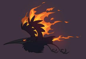 Fire hummingbird by Tanimatic