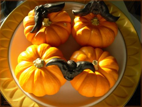 Pumpkins and Calthrop by supremextreme