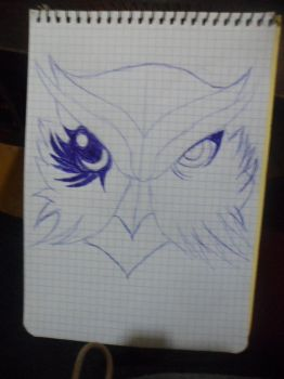 Two Sided Owl. by DEAD-chan102