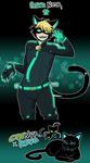 Chat Noir x REVO fusion - Schrodinger's Catboy by SoloAzume