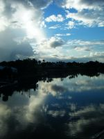 Florida Reflections... by Fluffytheartist