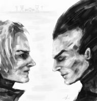 Trunks and Vegeta by jedera01