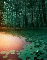 Lotus and Forest premade BG by StarsColdNight