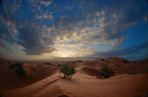 Sahara Sunrise by binarymind
