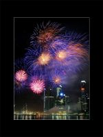 NDP 08 Fireworks - 04 by shin-ex