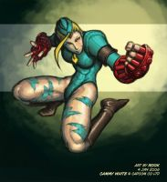 SFA3.FAC - Cammy by rook-over-here