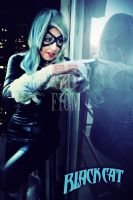 The lady black cat by JonathanDuran