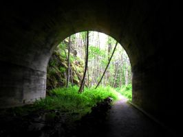 Tunnel Vision by nenglehardt