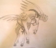 Pegasus4 by Chequer