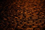 Road of Gold 2 by tom-a-spol-sro