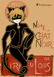 Chat Noir by my-name-is-magic