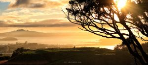 Mt Eden Sunrise by chrisgin
