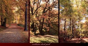 Autumn Exclusive Stock Pack by neverFading-stock