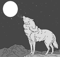 Wolf and the Moon by WhiteWolfCrisis13