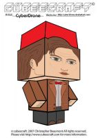 Cubeecraft- 11th Doctor 'Ver3' by CyberDrone
