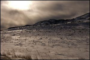 Cold and Desolate by lidarman