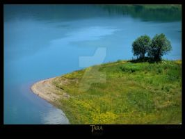 Zaovine lake 3 by Neshom