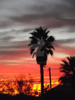 Arizona Sunset 03 by FYREGOD