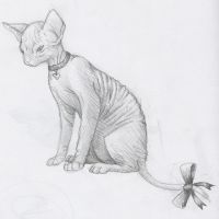 Hairless Cat: Pretty Ugly by Kinarei