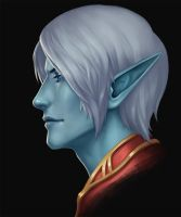 Dark Elf by Vrihedd