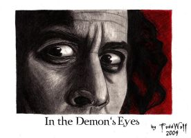ST:In the Demon's Eyes by AnsticeWolf