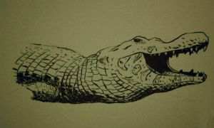 Crocodilo by itemb