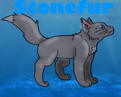 Stonefur by SuperSonicFireDragon
