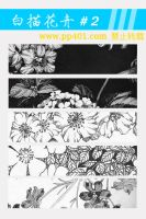 Flower Line textures 02 by mini0714