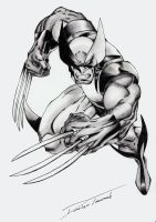 X-Men Wolverine by LukiSkajPlotek