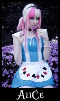 Alice by loba-chan