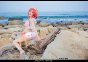 LoveLive Maki Cosplay 04 by eefai
