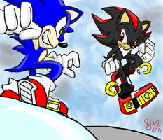.:Sonic vs Shadow:. by lalaraptor