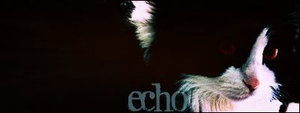 echo. by xxtheSilent