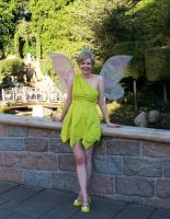 Tinkerbell by sarka1
