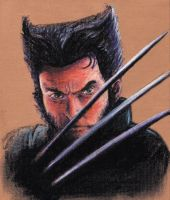 Wolverine by Slacker-RB